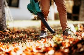 spring and fall clean up services